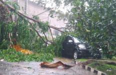Bruk, Dua Mobil Remuk Tertimpa Pohon di Halaman Dishub Bogor - JPNN.com