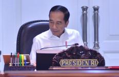 Presiden Jokowi: Ini yang Mau Saya Ganggu! - JPNN.com