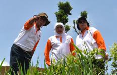 Pulihkan DAS, Menteri Siti Minta Warga Tak Buang Sampah Popok di Sungai - JPNN.com