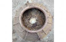 Telur Berusia 500 Tahun Ditemukan dalam Kondisi Utuh di Makam Kuno Tiongkok - JPNN.com