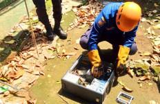 Ratusan Ular Masuk Permukiman Warga di Depok - JPNN.com