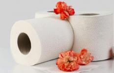 Ladies, Ini 5 Potensi Bahaya Tisu Toilet bagi Organ Kewanitaan - JPNN.com