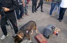 Penumpang Kapal di Pelabuhan Merak Kaget Melihat Banyak Polisi - JPNN.com