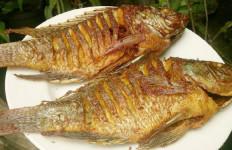 Ini Alasan Mengapa Anda Perlu Membatasi Konsumsi Ikan Bakar Saat Rayakan Tahun Baru - JPNN.com
