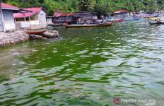 Mendadak Air Laut di Perairan Padang Berubah jadi Hijau - JPNN.com