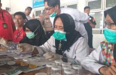 Tiga Sopir Bus Positif Mengonsumsi Narkotika - JPNN.com