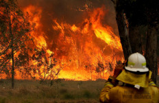 Polisi Australia Tangkap Ratusan Pembakar Hutan - JPNN.com