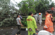 Bandung Dikepung Banjir dan Pohon Tumbang - JPNN.com