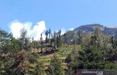 Dampak Karhutla, Gunung Merbabu Ditutup saat Malam Tahun Baru - JPNN.com