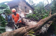 Angin Kencang Merusak Belasan Rumah di Jember - JPNN.com