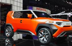 Toyota Beri Sinyal Produksi Crossover 4Active - JPNN.com