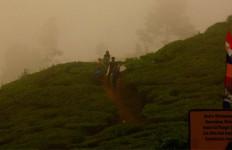 BMKG: Puncak Bogor Masih Diguyur Hujan, Waspada - JPNN.com