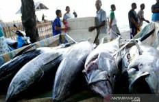 Jenis-Jenis Ikan yang Penting Dikonsumsi Saat Sahur, Bisa Mengontrol Rasa Lapar - JPNN.com