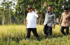 Penyediaan Pangan, Lumajang Berkomitmen Mengawal LP2B - JPNN.com