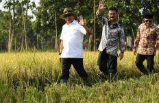 Bupati Situbondo Lindungi Lahan Pertanian dan Sejahterakan Petani - JPNN.com