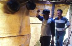 Satu Keluarga di Cilegon Tinggal Seatap dengan Hewan Ternak - JPNN.com