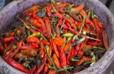 Cabai Busuk Laris Manis Diburu di Pasar Tradisional - JPNN.com