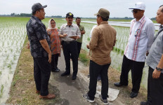 Kementan Terus Upayakan Solusi Alih Fungsi Lahan Pertanian - JPNN.com