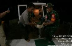 Harimau Sumatera Teror Warga Inhil - JPNN.com