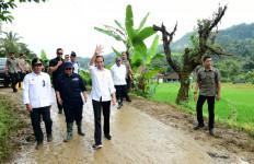 Tinjau Longsor di Harkatjaya, Jokowi Ingin Sistem Vegetatif Diterapkan - JPNN.com
