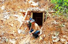 Bos Tambang Emas Ilegal di Gunung Halimun Salak Kabur - JPNN.com