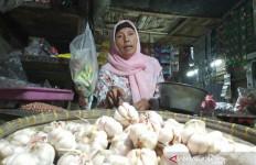 Indonesia Butuh Bawang, DPR Minta Kemendag Hormati Kewenangan Kementan - JPNN.com