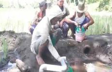 Viral, Sumber Mata Air di Sawah yang Dipercaya Bisa Menyembuhkan Penyakit - JPNN.com