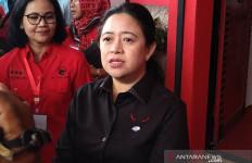 Berita Terbaru Seputar Bakal Calon Kepala Daerah yang Diusung PDIP - JPNN.com