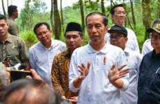 Wah Publik Ternyata Lebih Puas dengan Kinerja Jokowi Dibanding Wapres Ma'ruf Amin - JPNN.com