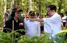 KLHK Akan Bangun 179 Unit Kebun Bibit Desa dan Kebun Bibit Rakyat di DAS Solo dan DAS Serayu - JPNN.com
