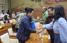 Nyoman Parta Tagih Janji Erick Thohir Tentang Rencana Holding BUMN - JPNN.com