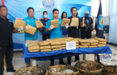 50 Kilogram Ganja dari Aceh Dikirim ke Banten, Siapa Pemesannya? - JPNN.com