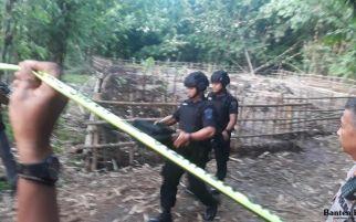 Mortir Aktif di Tengah Kebun Bambu