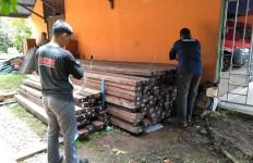 Gakkum KLHK: Kasus Illegal Logging di Ketapang Segera Disidangkan - JPNN.com