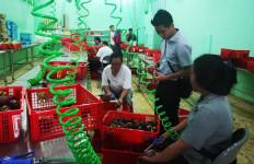 Belum Setahun, Petani Muda Ini Punya Omset Rp14 Miliar Ekspor ke 10 Negara - JPNN.com
