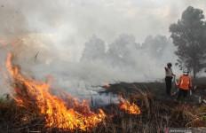 Karhutla di Riau Meluas, Tersangka Pembakaran Baru 21 Orang - JPNN.com