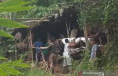 Polisi Pastikan Usut Kasus Tewasnya Tiga Pekerja Tambang Emas di Bengkulu - JPNN.com