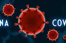 Waspada, Pasien Sembuh Virus Corona Bisa Kembali Dinyatakan Positif - JPNN.com