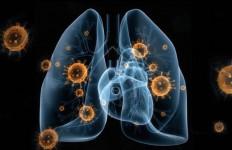 Pesan WHO Untuk Negara yang Membatasi Gerak Warga Selama Pandemi Corona - JPNN.com