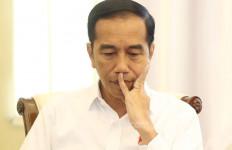 Syahrul PKS Minta Pak Jokowi Blusukan ke Lapangan - JPNN.com