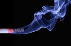 Beredar Isu Filter Rokok Mengandung Darah Babi, Ini Penjelasannya - JPNN.com