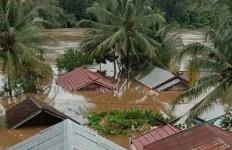 Ratusan Rumah di Seribu Riam Terendam Banjir Sampai Atap Rumah - JPNN.com