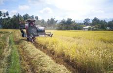 Petani Sulteng Surplus Beras Meski Pandemi COVID-19 - JPNN.com
