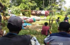 Dua Pendulang Emas Tewas Tertimpa Pohon Tumbang, Kondisinya Mengenaskan - JPNN.com