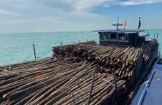 Ada Kapal Mau Seludupkan Kayu Terlarang ke Singapura, Krunya Kabur Naik Speedboat - JPNN.com