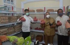 Kunjungi TTIC Makassar, Mentan SYL Ajak Masyarakat Patuhi Protokol Kesehatan - JPNN.com