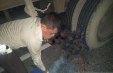 Pengedara Motor Tewas dengan Mengenaskan di Bawah Kolong Truk Kontainer, nih Fotonya - JPNN.com