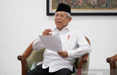 Wapres Ma'ruf Amin Bicara Mudik dan Corona - JPNN.com