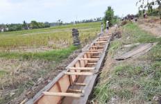 Kementan Laksanakan Kegiatan RJIT di Wilayah Bali seluas 5.245 ha - JPNN.com