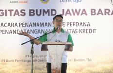 Kang Emil Apresiasi Kolaborasi Dua BUMD Jabar di Bidang Pertanian - JPNN.com